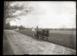 Plowing fields at Hillside School (Greenwich, Mass.)