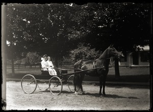 Two women driving a buggy (Greenwich, Mass.)