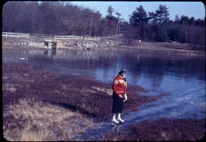 First page of Anne Garside skating on the Duxbury Cranberry Company bog next to Franklin St.,             Duxbury, Mass.