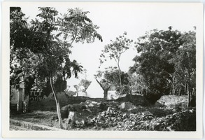 First page of Ruins and revegetation, Thái Bình