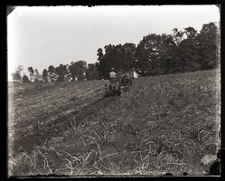 First page of Harvesting potatoes with horse drawn harvester, Massachusetts Agricultural College