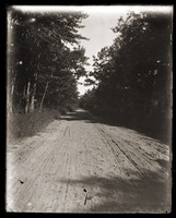 First page of Dirt road near Massachusetts Agricultural College
