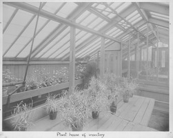 First page of Plant house of Insectary view of man tending plants inside the greenhouse