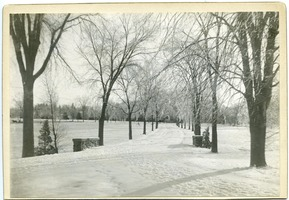 First page of M.A.C. Avenue in snow