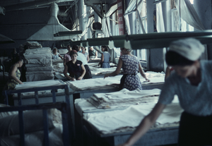 Women workers in a cotton textile factory