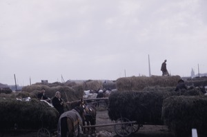 Thumbnail of Hay trade at peasant market