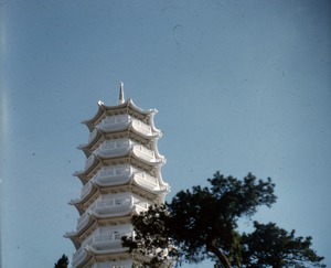 Thumbnail of Tiger Pagoda