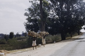 Thumbnail of Woman carrying firewood near Ranchi