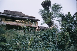 Thumbnail of House and garden in rural Nepal