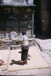 Thumbnail of Woman spreads grain to dry