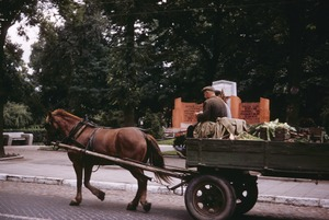 Thumbnail of Farmer driving horse and wagon