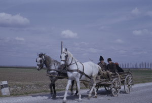 Peasants in wagon, Vojvodina
