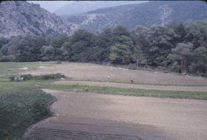 Thumbnail of Cultivated fields by river