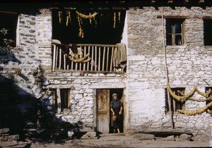 Skocivir dwelling