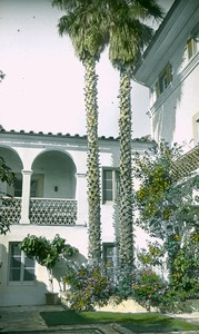 Thumbnail of Courtyard of a white stucco residence with palm trees