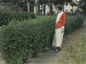 Thumbnail of Acanthopanax (woman standing next to hedge)