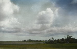 Thumbnail of The Everglades