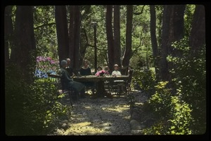Thumbnail of Group sitting around table in the woods