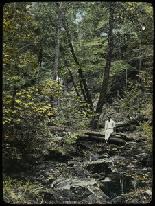 Thumbnail of Holland Glen (young man sitting on log over woodland stream)