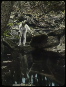 Thumbnail of Holland Glen (young man observing woodland stream pool)