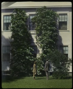 Thumbnail of C. R. Elder: house with large climbing flowering vine