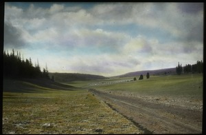 Thumbnail of Dirt road through grassy field bordered with coniferous trees