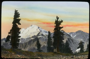 Thumbnail of Snow peaked mountains and tall evergreens in foreground