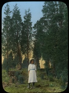 Thumbnail of Girl standing front of (juniper?) trees