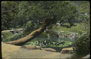 Thumbnail of Japanese garden in Japan