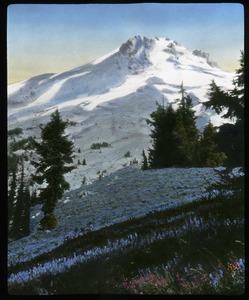 Thumbnail of Mount Hood