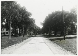 Thumbnail of Tree-lined street