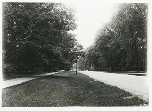Thumbnail of Sidewalk, wide verge, and street in unidentified town