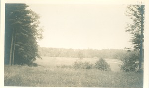 Thumbnail of Field in Falmouth