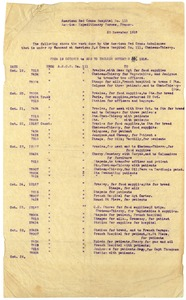 Thumbnail of American Red Cross ambulance activity report