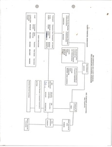 Thumbnail of Organizational chart International Management Group client financial and corporate accounting personnel