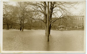 Thumbnail of Aftermath of the great Hartford Flood Deep flood waters by the Corning Fountain (Bushnell Park, with Capitol National          Bank, Asylum Street, in background))