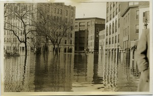 Thumbnail of Aftermath of the great Hartford Flood Rowboat on flood waters (near corner of Gold and Trumbull Street)