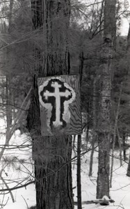 Thumbnail of Hand-painted cross on plywood plank, mounted to a white pine in the woods