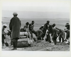 Thumbnail of Gang of laborers working on a roadbed with shovels and small steamroller