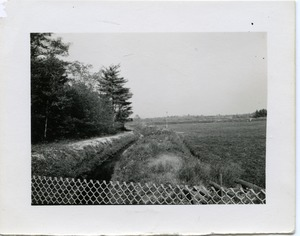 Thumbnail of Duxbury Cranberry Company: Bog no. 12, at Rte. 14, near the pump house View of the drainage ditch