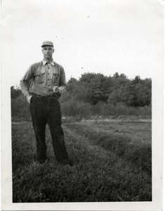 Thumbnail of Duxbury Cranberry Company: Kenneth G. Garside in work clothes, standing on a bog with his pipe