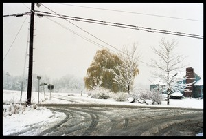 Thumbnail of South Maple Street, Amherst, after a heavy, wet snow