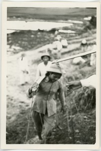 Thumbnail of North Vietnamese woman soldier climbing hill, Thái Bình province