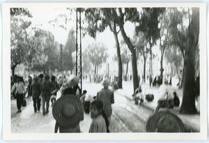 Thumbnail of Street scene, Old Quarter