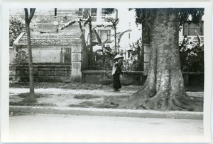 Thumbnail of Woman walking with two baskets balanced over shoulder
