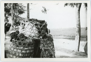 Thumbnail of Bicycle freight, Thái Bình province