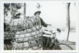 Thumbnail of Cyclists with freight, Thái Bình province