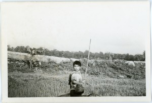 Thumbnail of Boy in countryside