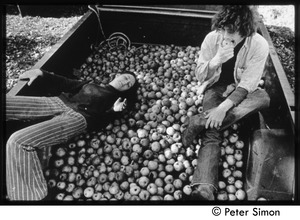 Thumbnail of Truck full of apples -- to sell or else to can, Tree Frog Farm commune