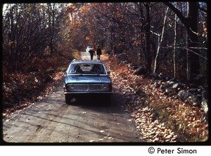 Thumbnail of Car driving down a dirt road in fall, Tree Frog Farm commune